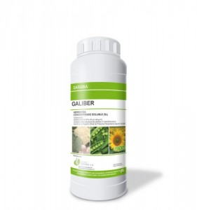 Galiber1L-FILEminimizer-469x500